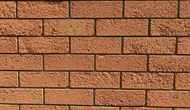 Pioneer Bricks Cladding Floor Tiles Roofing